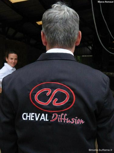cheval-diffusion-marie-bufferne
